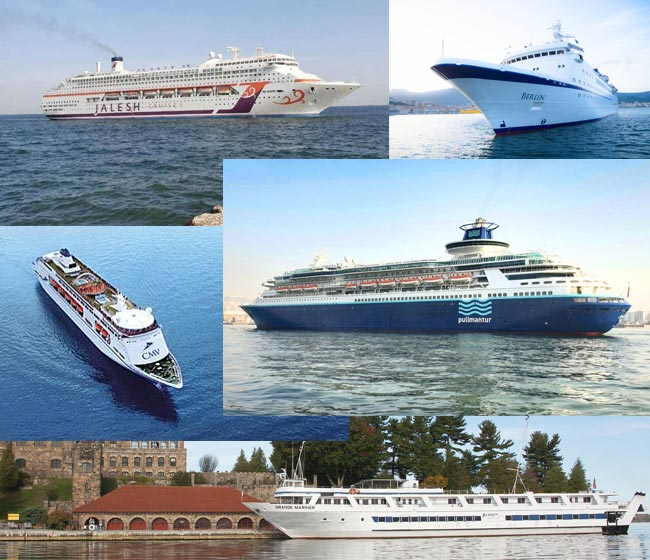 Cruise Lines That Ceased Operation Due to COVID-19